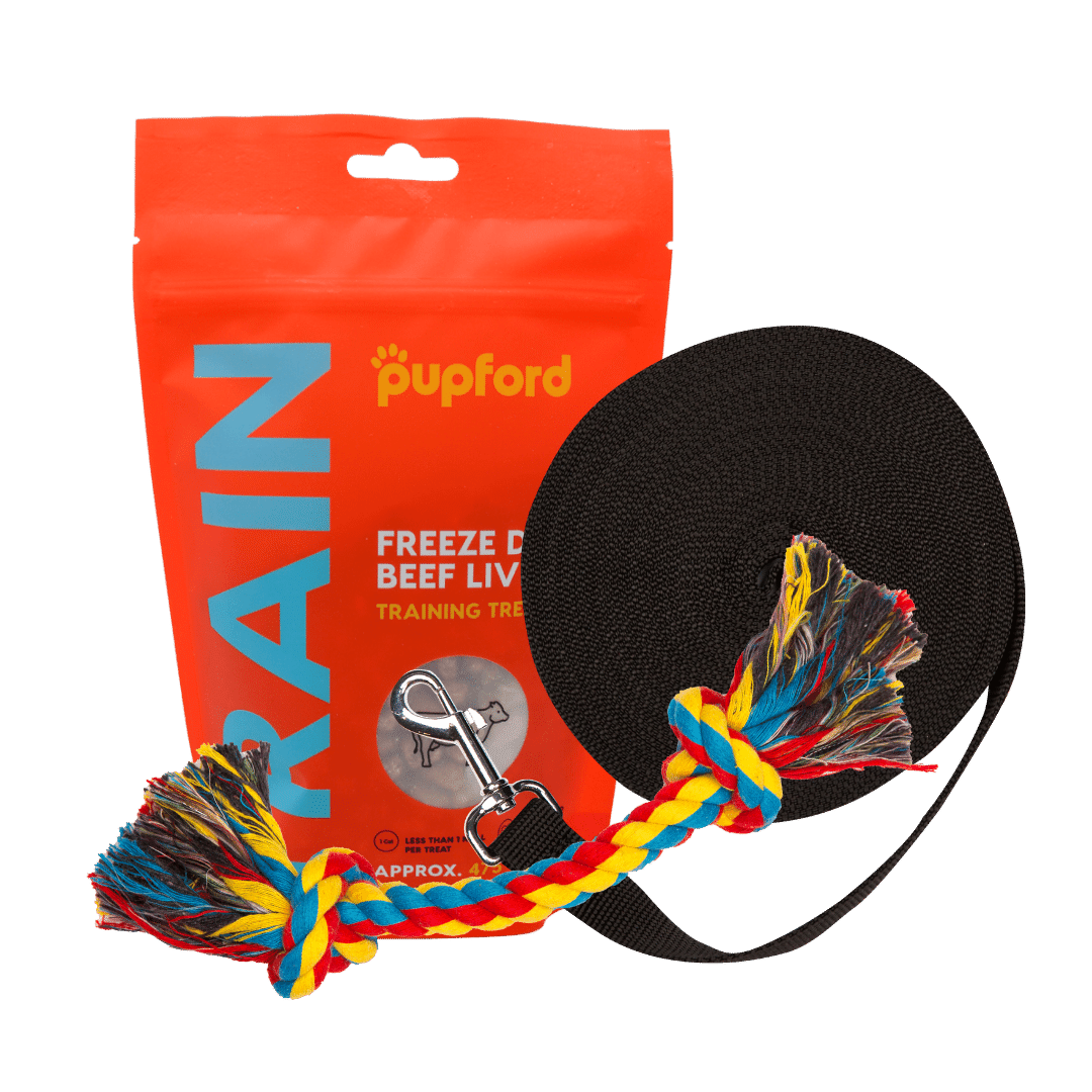 Training Starter Pack Product Image | Pupford